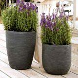SHABBY, vase decorative pentru flori, forme inspirate din geometria elementara reinterpretate, culori diverse