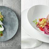 Temptaste, portelan pentru restaurant in linii de o simplitate exceptionala, doua finisaje, clasic portelan si modern, colorat intens, cu un efect garantat in orice restaurant
